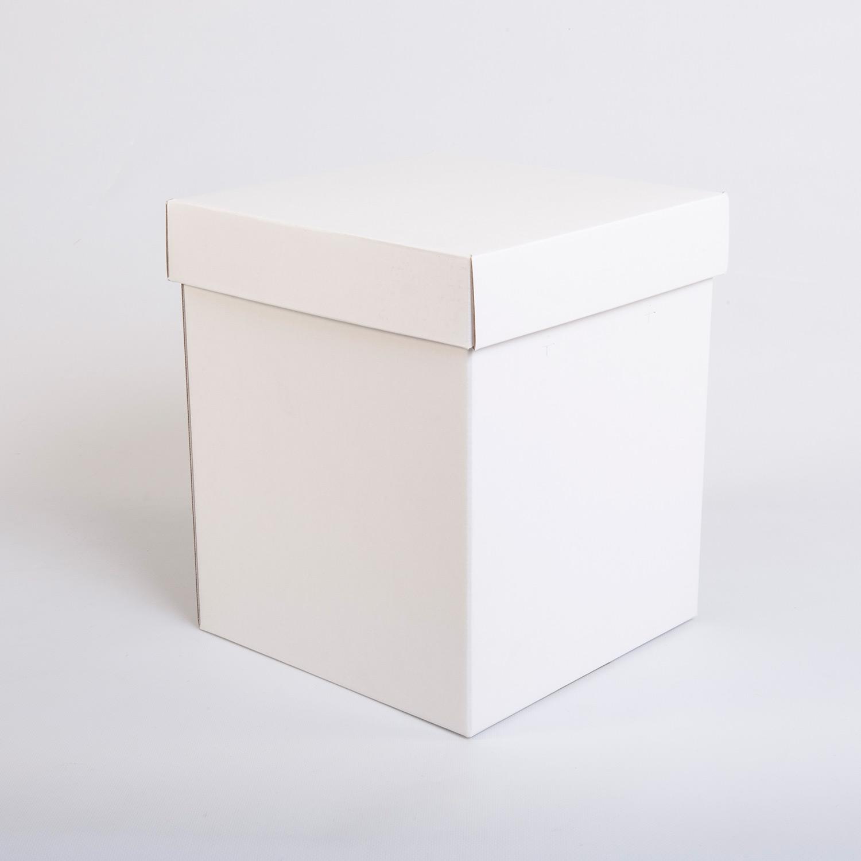 scatole con coperchio